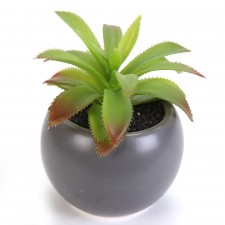 Plante Grasse en pot,synthétique, h.13cm -